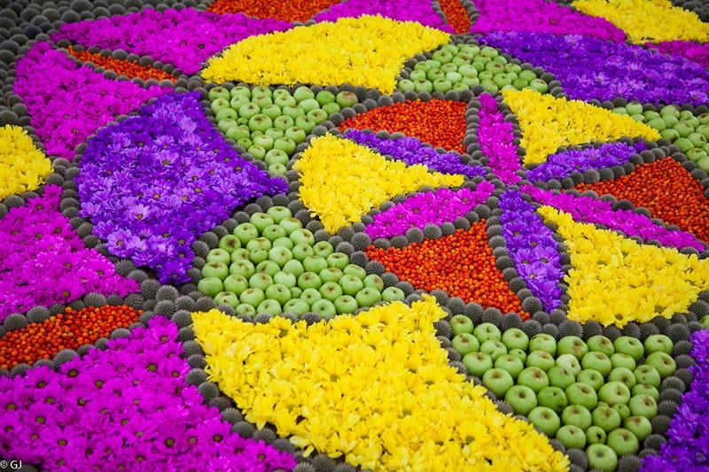 Цветочные ковры Вентспилса 2017.