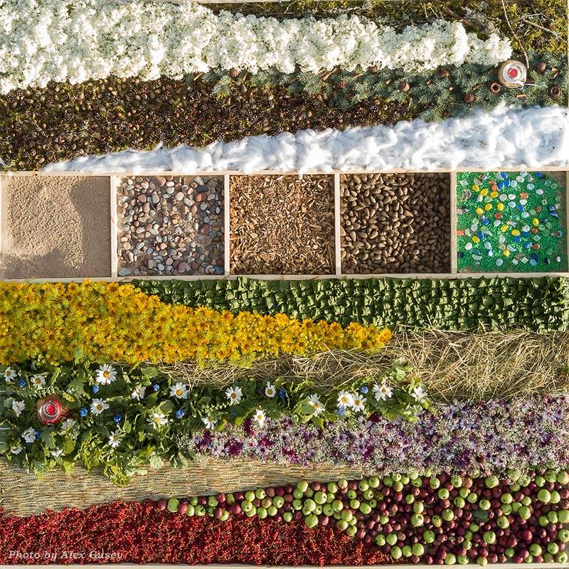 Цветочные ковры в Вентспилсе 2017. Часть 2.