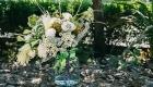 Пятерка любимчиков от Михаила Чудновца. Хризантемы.